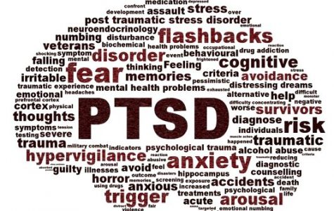 The Complicated Road to Recovery: Living with PTSD