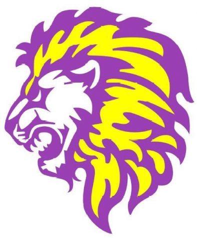 Meet a Lion: Mr. Thien