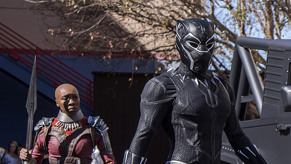 King T'Challa, the Black Panther, of Wakanda, arrives for meet and greets at Disney California Adventure park, accompanied by members of the Dora Milaje - 2/16/18. (Joshua Sudock/Disneyland Resort)